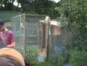 The Hope Animal Sanctuary